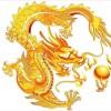 1001_1584539631_avatar