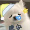 8001_6134174_avatar