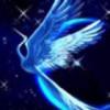 1001_146325805_avatar