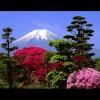 1001_1281423753_avatar