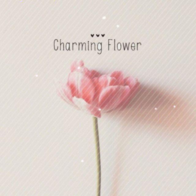 8001_2447040_avatar