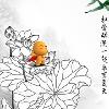 1001_1712246314_avatar