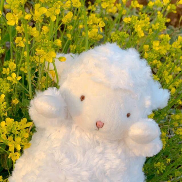 8001_6313251_avatar