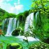 5001_53928337_avatar