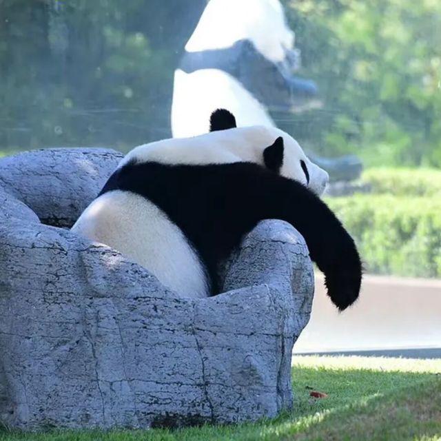 8001_901620_avatar