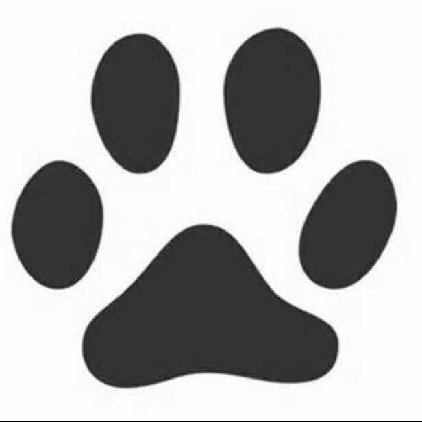 8001_1562126_avatar