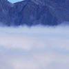 5001_4994736_avatar
