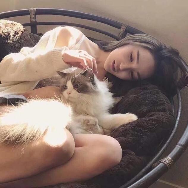 8001_5233338_avatar