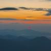 模,发布寻狗启示热爱宠物狗狗,希望流浪狗回家的狗主人。