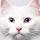3002_1528873470_avatar