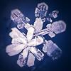 5001_3134383_avatar