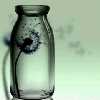 5001_59142806_avatar