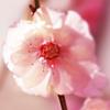 5001_101773649_avatar