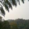 5001_93809549_avatar