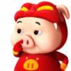 小猪也会飞
